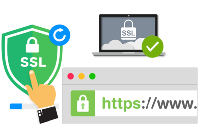 Fix curl SSL certificate problem